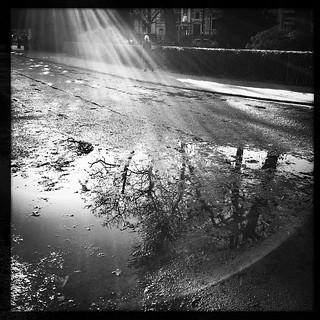 Un p*** de soleil ce matin sur #Bruxelles