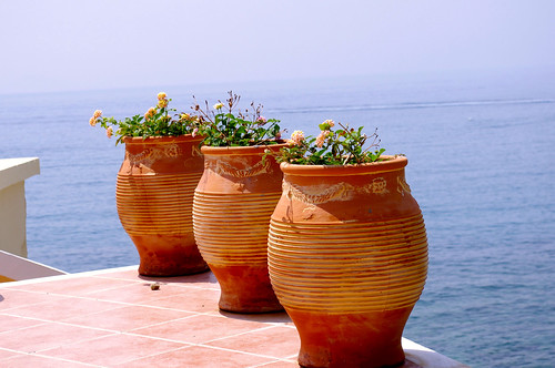 sea meer blumen greece griechenland