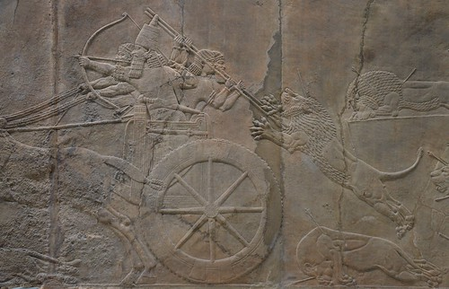 Sculpted reliefs depicting Ashurbanipal, the last great Assyrian king, hunting lions, gypsum hall relief from the North Palace of Nineveh (Irak), c. 645-635 BC, British Museum