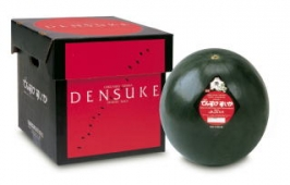 watermelon-densuke