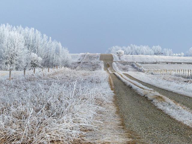 Driving in a winter wonderland