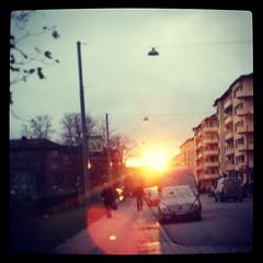 Idag såg jag solen! #nejvember