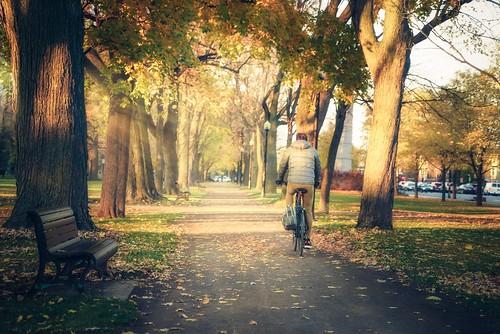 autumn sunset canada fall quebec montreal promenade lafontaine