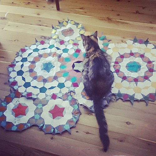 The inevitable fate of all things quilty: to be sat on by #cats. #catsofinstagram #millefioriquilt #passacaglia #unfussypassacaglia