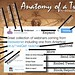 Da_Vinci_Tweet_Anatomy by The Daring Librarian