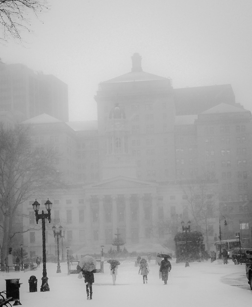 Brooklyn Borough Hall Disappearing Into The Snow--NYC, 1/26/15