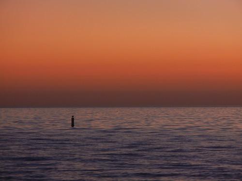 ocean sunset bird gulfofmexico florida buoy bonitasprings 2014 project52