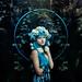 hydrangea.. by .bella.