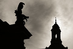 Dresden Klassik 052