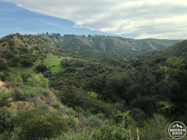las virgenes canyon 33