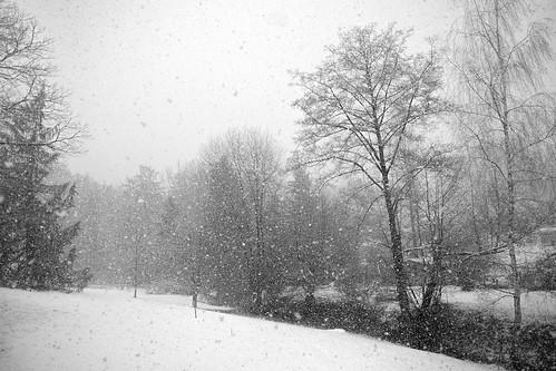 winter blackandwhite bw snow canon landscape hiver 5d canon5d neige 24mm fullframe eos5d 5dclassic 5dmarki 24mmf28isusm