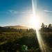 massive lens flare - Tillamook, Oregon