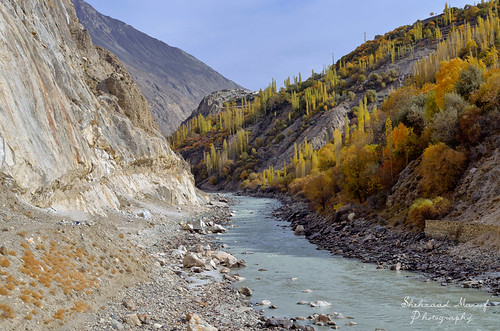 autumn trees pakistan mountains fall love nature river landscape nikon peace fallcolors hill valley harmony karakoram hunza nagar beautifulpakistan gilgitbaltistan pakistanautumn