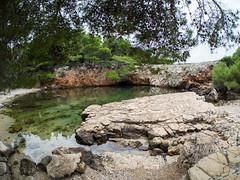 Dead sea pond