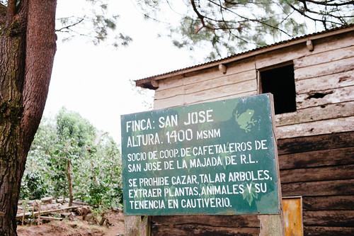Finca San Jose