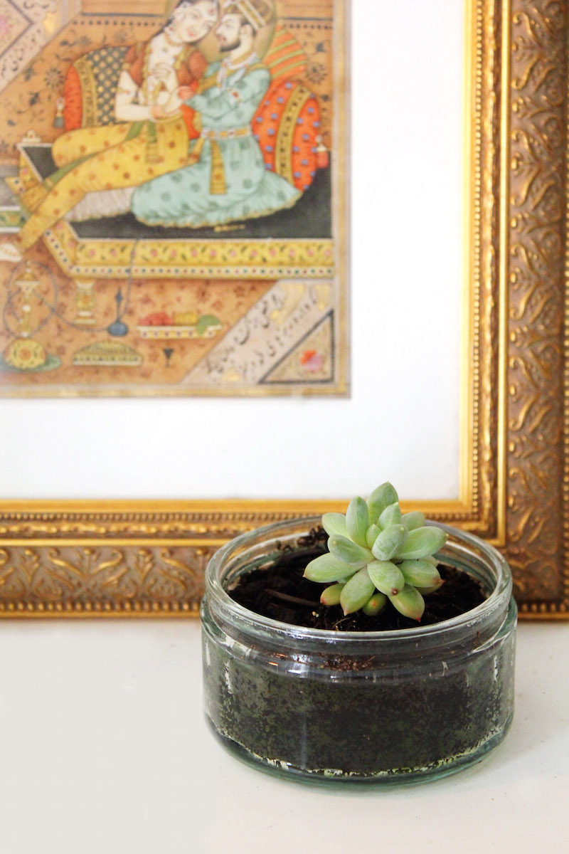 Urban Jungle Bloggers Winter Bedroom Baby Succulent