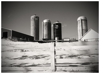 Kingstead Farm