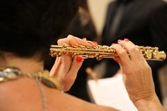 flute, western concert flute, close-up, wind instrument,