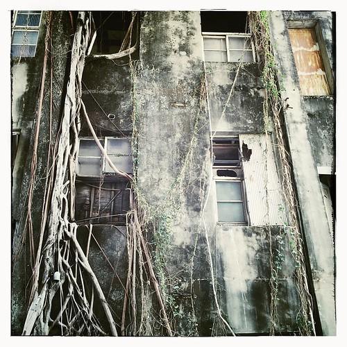 Abandoned in Caotun. #nantou #taiwan #caotun #abandoned #台灣 #南投 #草屯