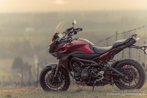 Yamaha MT 09 Tracer Sonnenuntergang-4.jpg