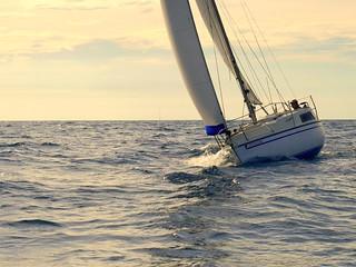 Navegante solitario