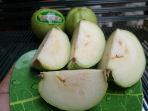 Buah Lokal Guava Crystal