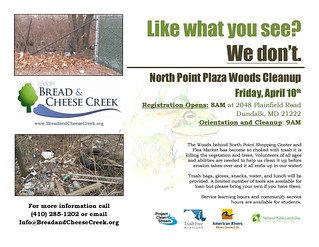 April 10th Cleanup of North Point Plaza Woods - Volunteers Needed!