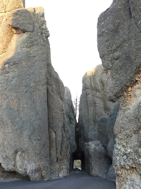 Needles Highway, Custer State Park