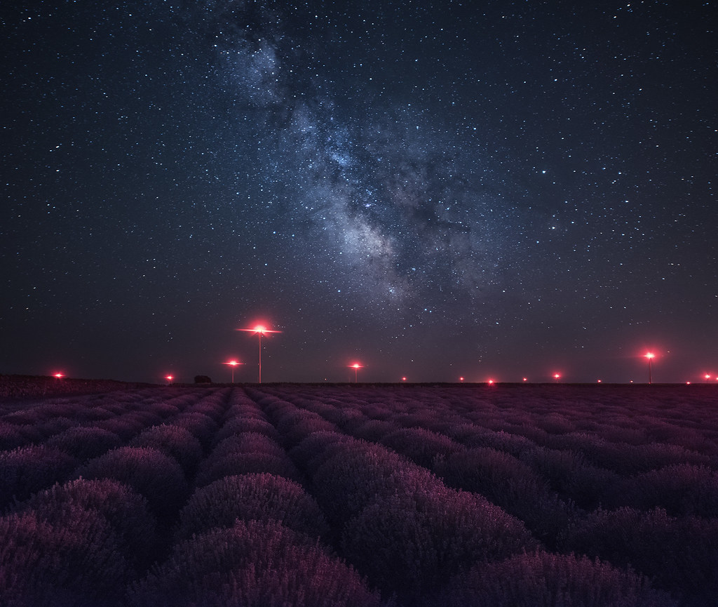 Milky way above lavender field in Bulgaria