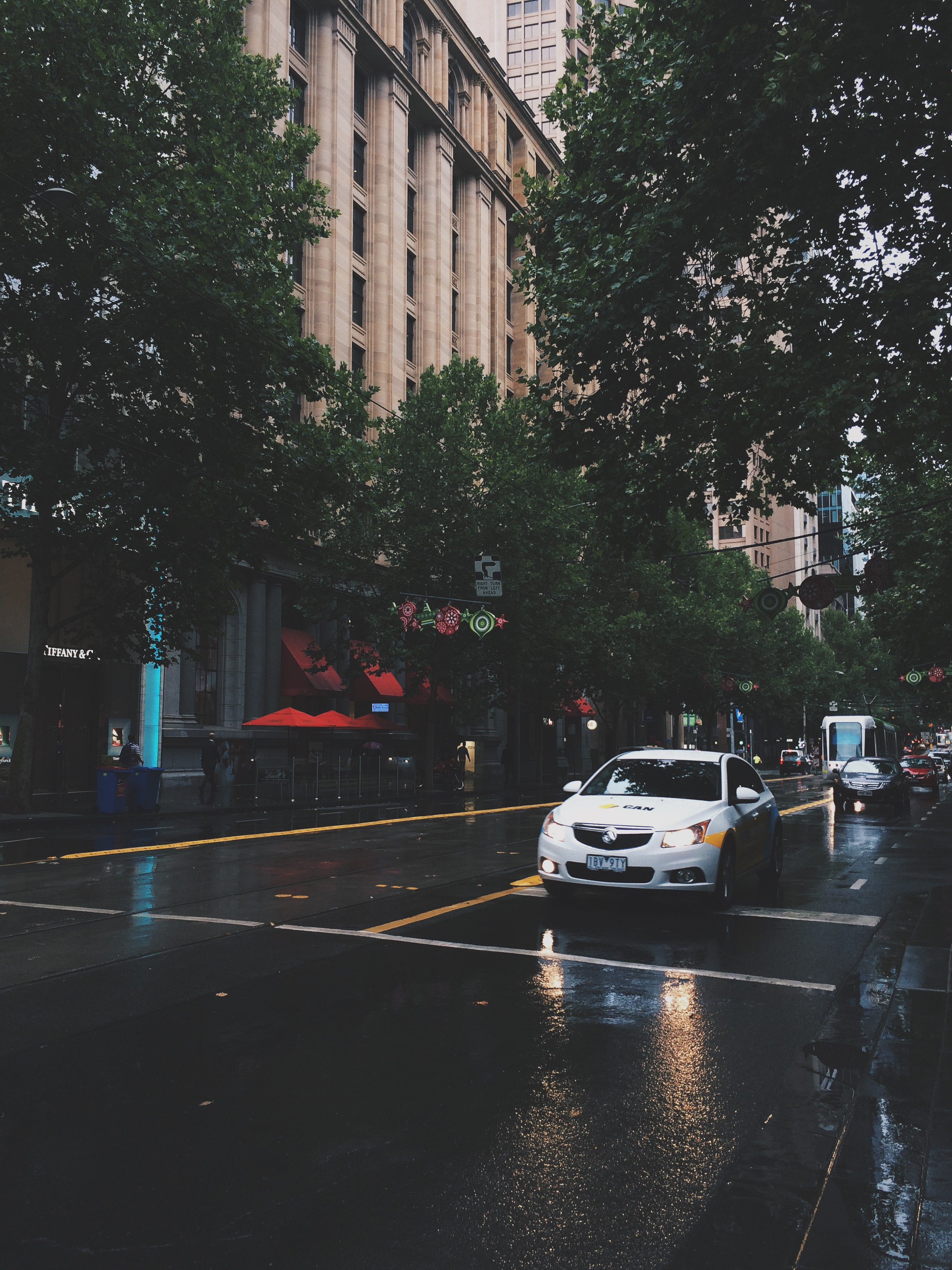 Melbourne, Rain, Storm, Summer, Bramble and Thorn, 7 Things