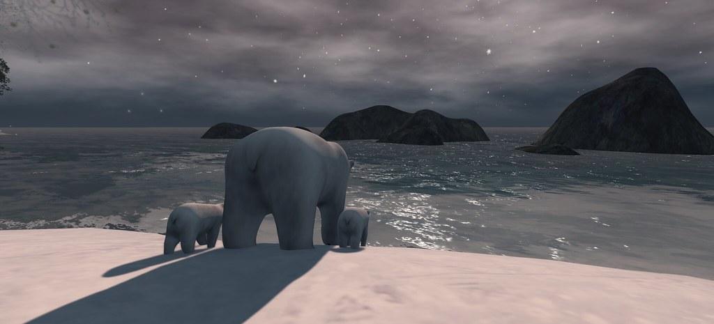 Polar Butts