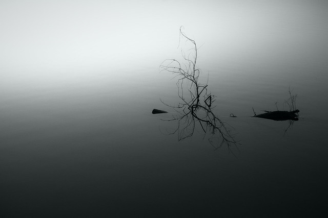 20141209_01_Quiet river