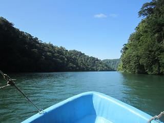 Up the Rio Dulce. Guatemala.