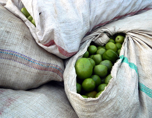 Bags of Green Tomatoes on a Boat on Inle Lake