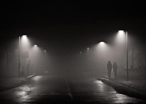 fog // dresden