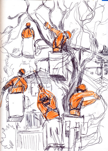 January 2015: Tree Cutters