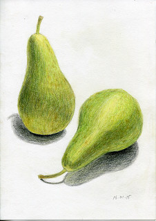 two pears. colored pencils