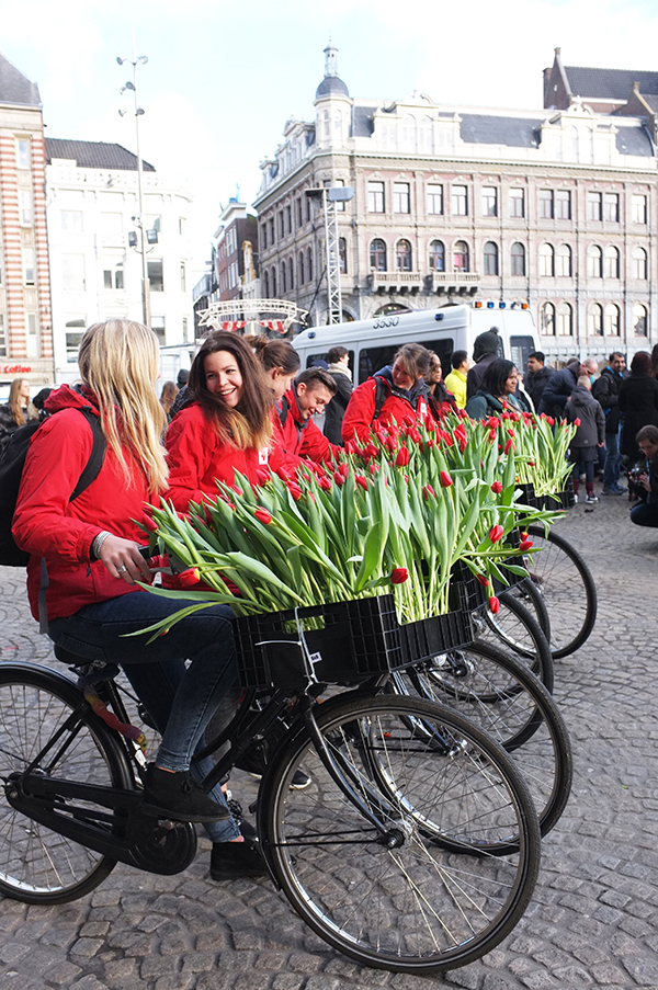 ACC_TulipDay_cyclists