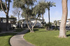 Paradise Palms Apartments