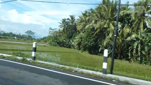Yogyakarta-2-002