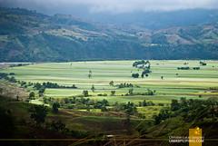 Tapao Viewdeck Quirino
