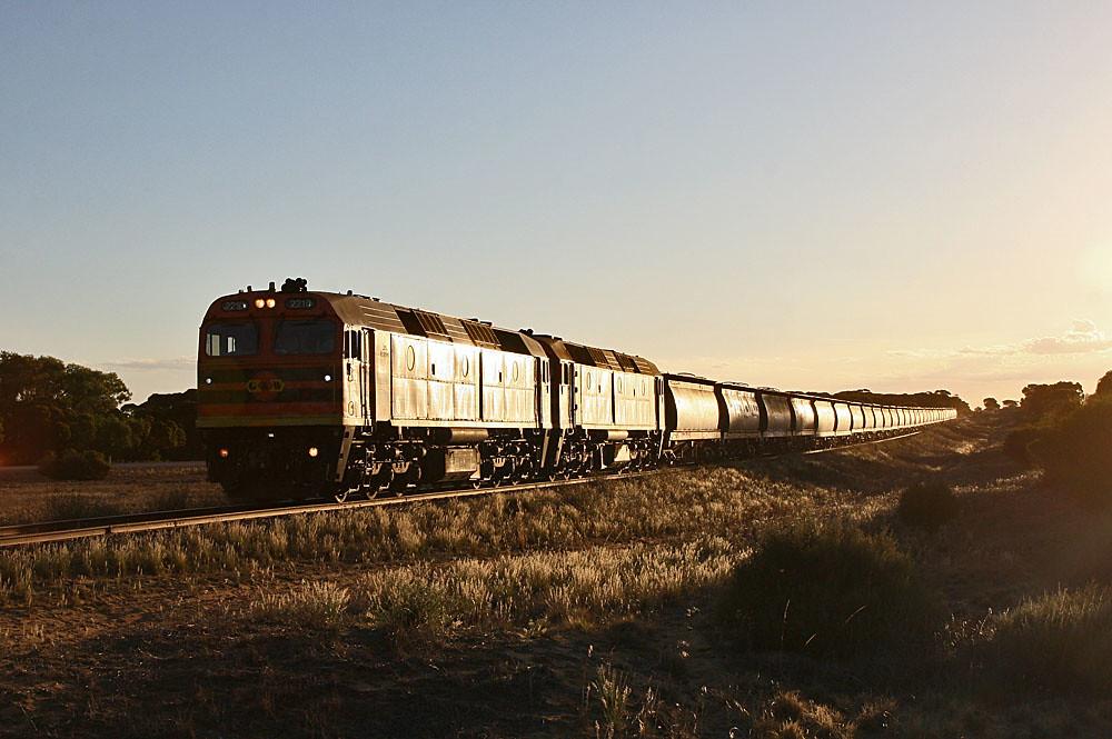 Loxton line glint 2 by Bingley Hall
