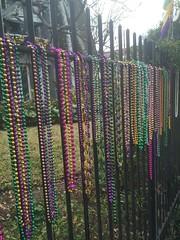 1131 Mardi Gras
