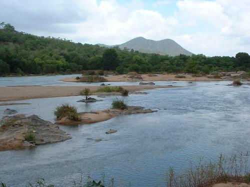 india montagne rivière karnataka arbre ind doddamakali