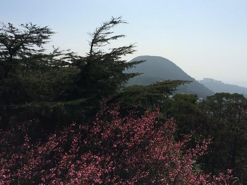 Taipei Day 3 021