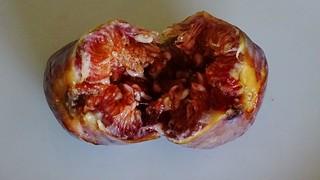 Broken fig
