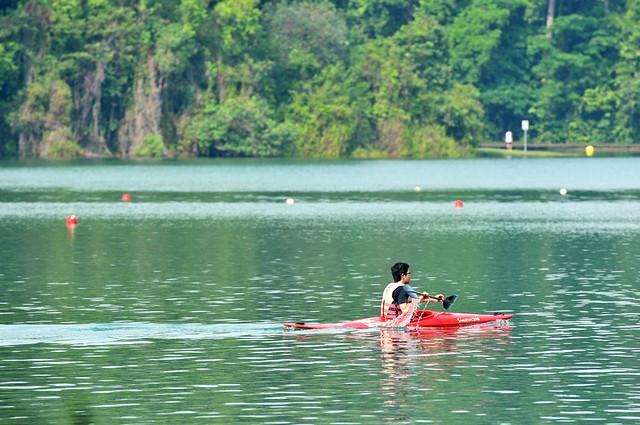 Sunday Kayak Practice | Macritchie Reservoir, Singapore