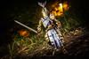 Shining Knight