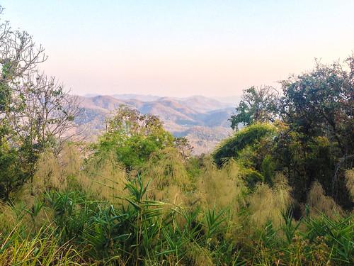 landscape ccby jancbeck