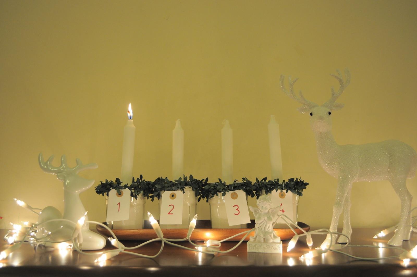 reindeer (21)